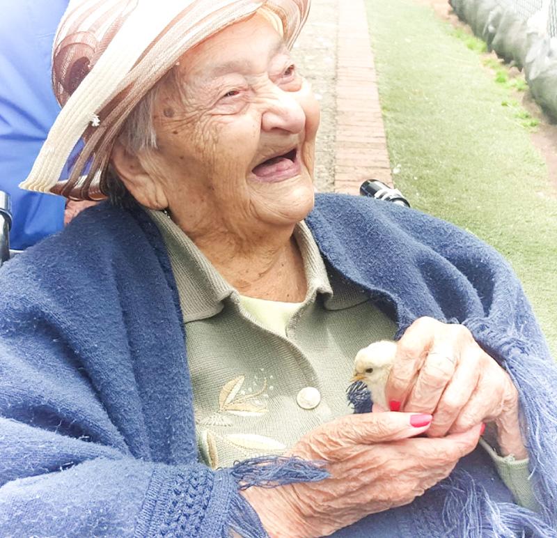 Adulto Mayor Feliz Interactuando con Animales